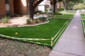 Shady lawn in Dallas, Texas