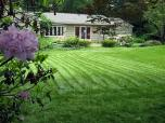 This lawn is cut once a month one average; its cut high with a sharp blade and mulched