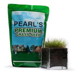 Pearl's Premium Ultra Low Maintenance Lawn Seed, Sunny Mixture, 25lb Bag