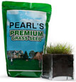 Buy Drought Tolerant Grass Seed Now!